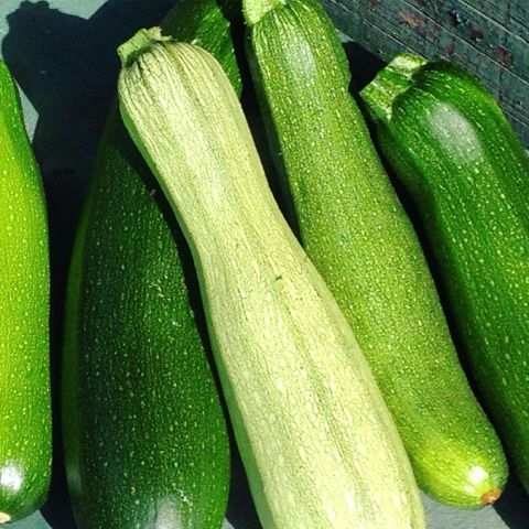 courgette, courgette glut, recipes, gardening, no dig, Limousin, Creuse, potager, retreat, France, Nouvelle Aquitaine, permaculture, marrows, grow your own, home grown, potimarron, tomatoes, bees, holidays, last minute, rural france, off the beaten track, unique holidays, country life, ex pat, Royere de Vassiviere, summer, 2017,