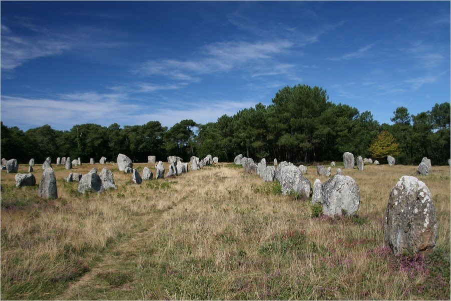 carnac-alignments-stone-15