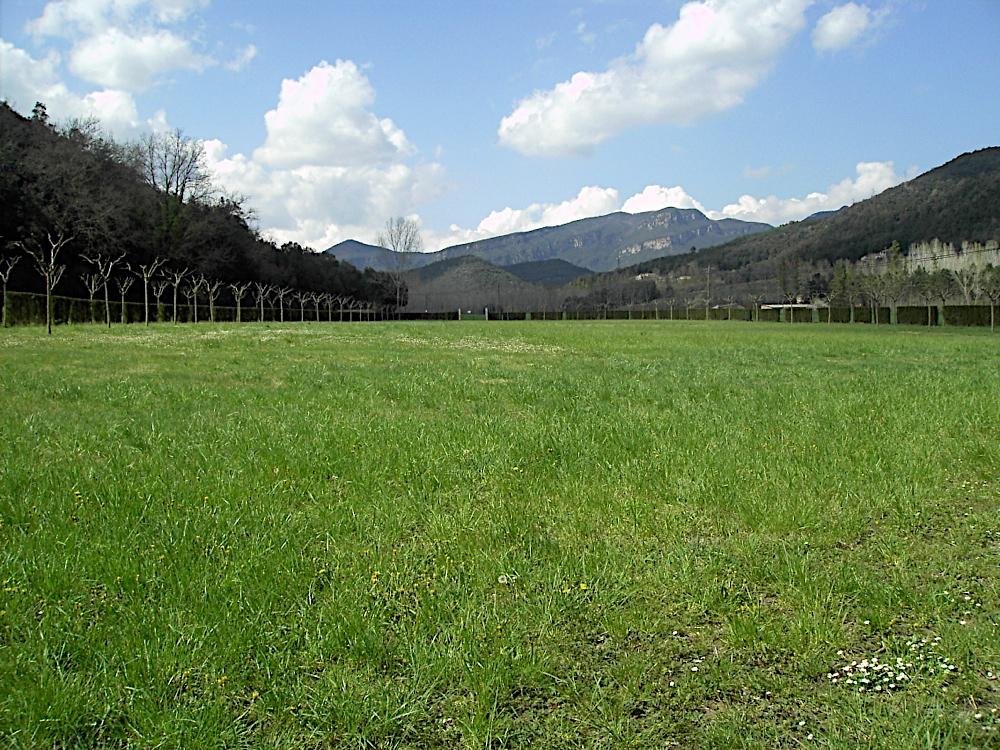 Campaments Amb Skues 2007 - PICT2313.JPG