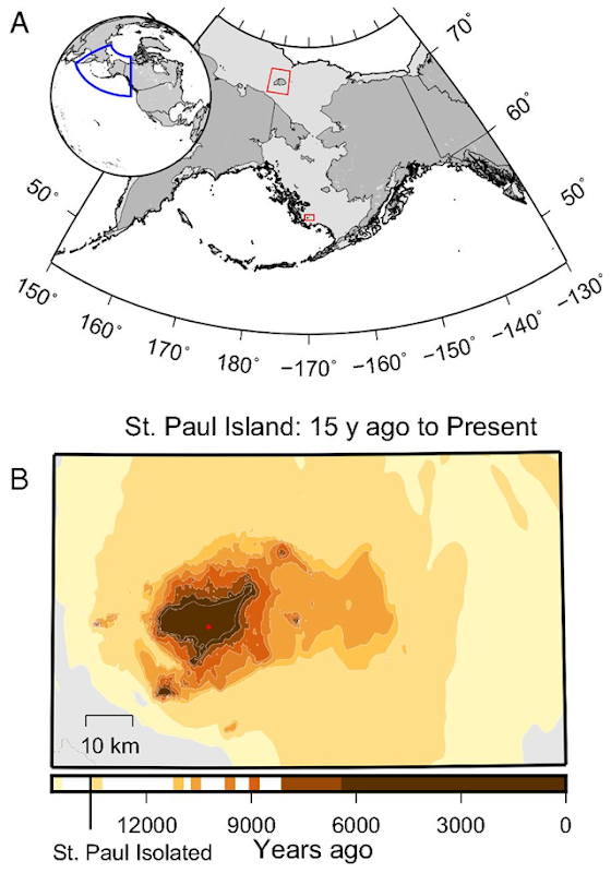 Location of St. Paul Island, Alaska and areal losses due to rising sea level. (A) Map of current continents (dark gray) and the past position of the Bering Land Bridge (light gray) with red boxes indicating Wrangel Island (Upper) and St. Paul Island (Lower). (B) The shrinking area of St. Paul Island from 15,000 years ago to the present due to rising sea level during the late Pleistocene through the middle Holocene. The red dot indicates the location of Lake Hill. Graphic: Graham, et al., 2016 / PNAS