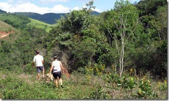 estacao-andorinhas-trilhas