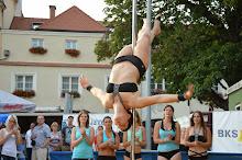 Stadtfest Herzogenburg 2014_ (100)