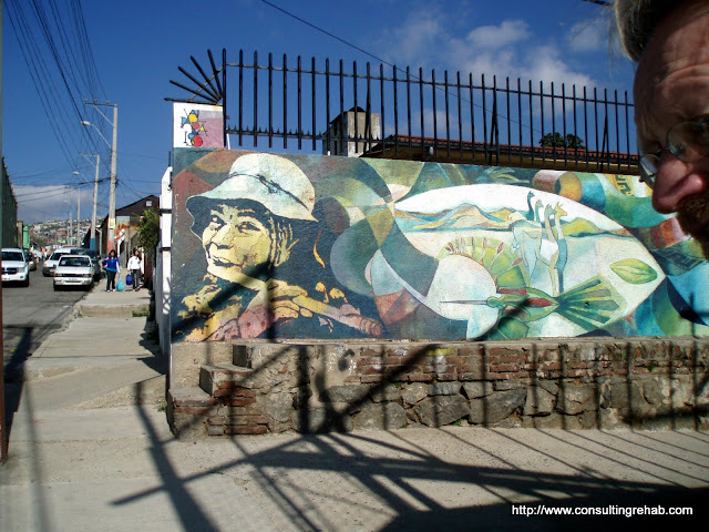 Valparaiso Grafitti - P7160243.JPG