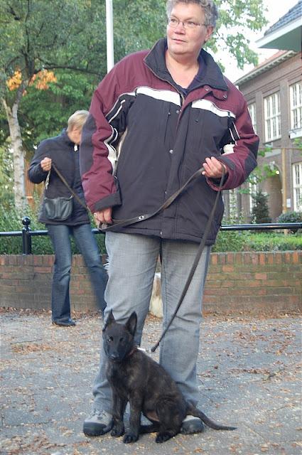 KNON pups in de stad 09-2011 - DSC_0052.JPG