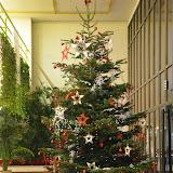 El Nadal ens inspira... - DSC_0106.JPG