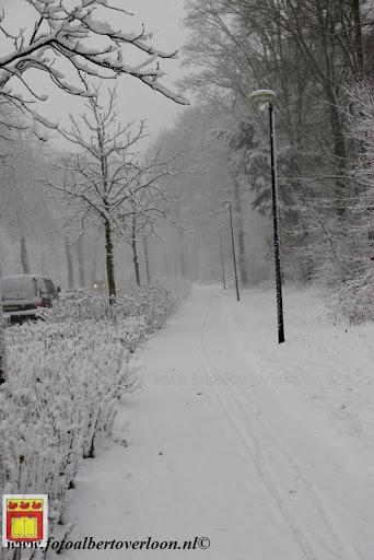 eerste sneeuwval in overloon 07-12-2012  (8).JPG