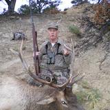 Elk 2007