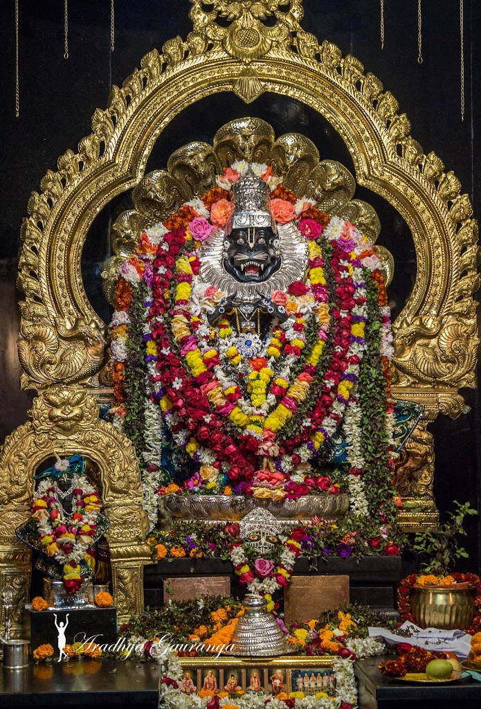ISKCON Mayapur Deity Darshan 11 Jan 2017 (9)