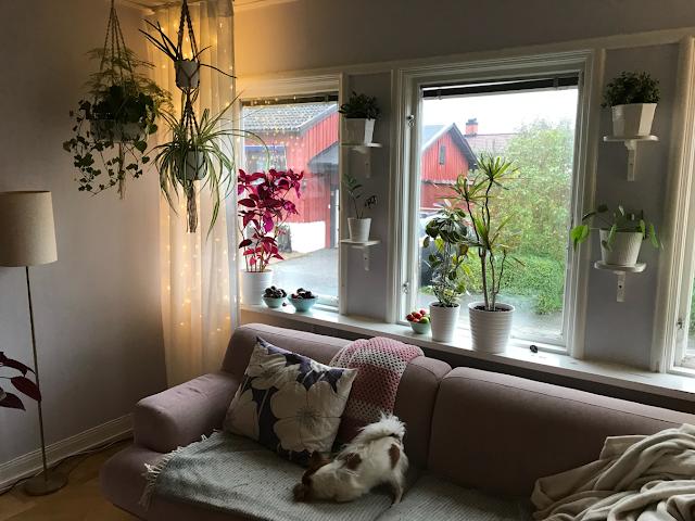 Helt nya Lattematte (DIY and villa life in Stockholm): Ljusgardin led rusta QE-81