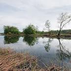 Белогорье - Заповедник лес на Ворскле 042.jpg