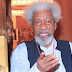2019 ELECTIONS: Vote out old, failed politicians in 2019, Soyinka tells youths
