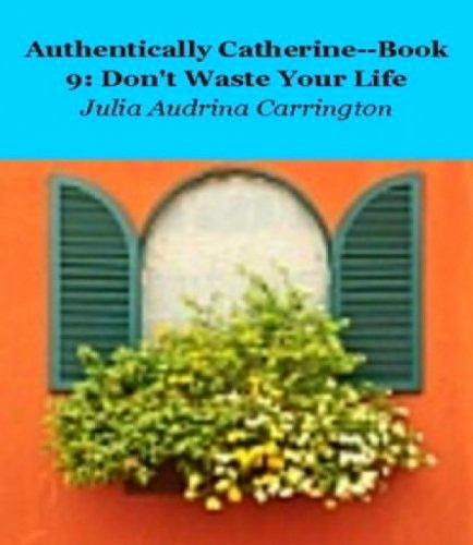 Low Budgetauthentically Catherine Book 9 Dont Waste Your Life