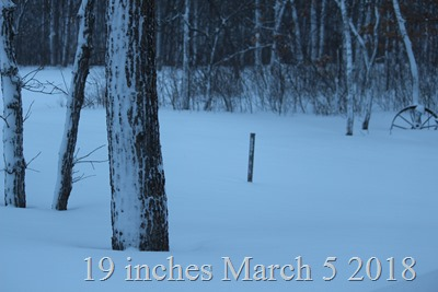 19 inches at the snow stick