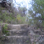 Stairs on track to Lillian's Glen (41871)
