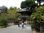 Passing by the Japanese Tea Gardens