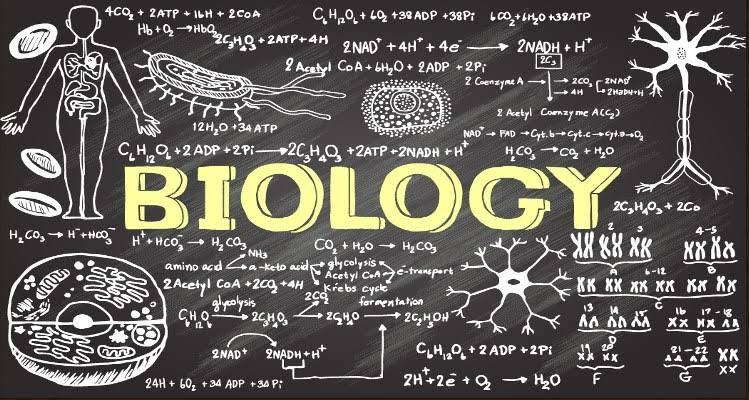 TYT-AYT Biyoloji Yeni Nesil Sorular.pdf