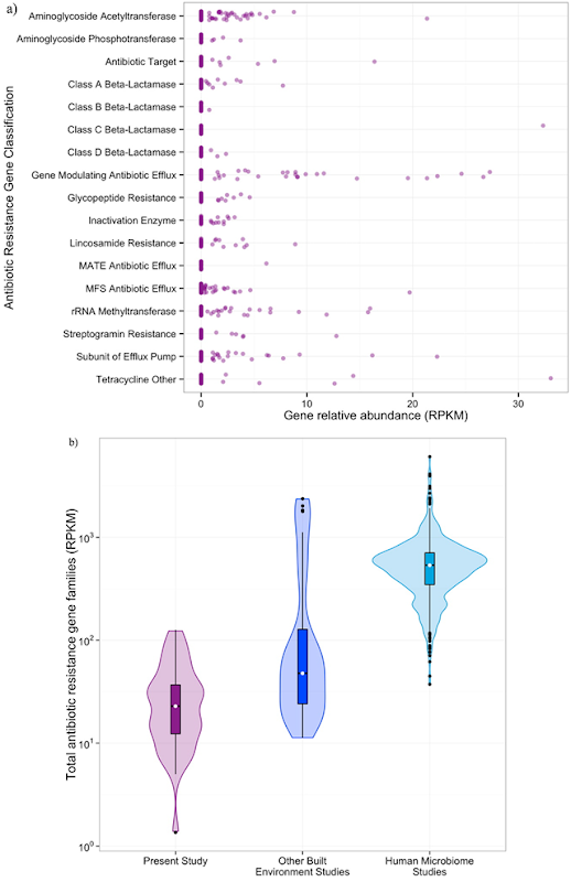 Antibiotic resistance gene families (identified in ARDB) were identified throughout the building but at lower relative abundances than observed elsewhere. a) Dot plot of the relative abundance (in RPKM) of each antibiotic gene class by sample. b) Violin plot, showing the median (white dot) and quartile ranges (box and whiskers) as well as the density distribution (shaded area) of the relative abundance of all antibiotic resistance gene families (in RPKM) from the present study (purple, n = 36), other built environment microbiomes (blue, n = 40), and the human microbiome (teal, n = 552). Graphic: Hartmann, et al., 2016 / Environmental Science & Technology
