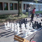 08_08_17_swing7 schach.jpg
