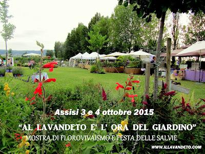 Assisi mostre San Francesco