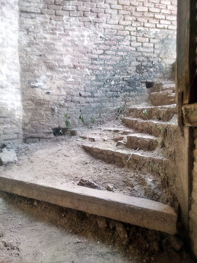the_steps
