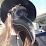 Becka Dillon's profile photo