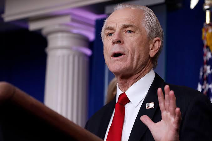 Navarro, White House advisor, lashes over 'fake' test kits at China
