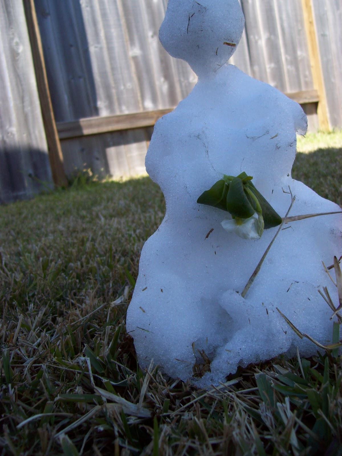 Snow Day - 101_6001.JPG