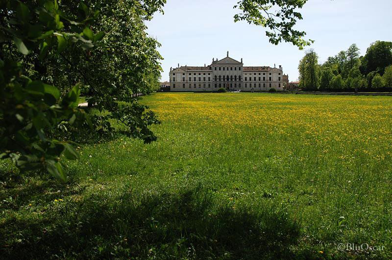 Villa Pisani 69