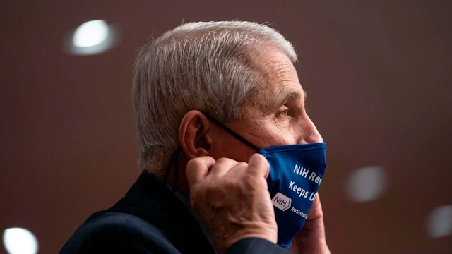 'Breaking With All Norms': White House Slams Fauci Over WaPo Interview Criticizing U.S. Pandemic Preparedness