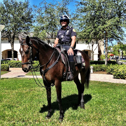 Mounted Police Wallpapers HD