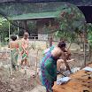 Horta na Ecovila da Mata 2016