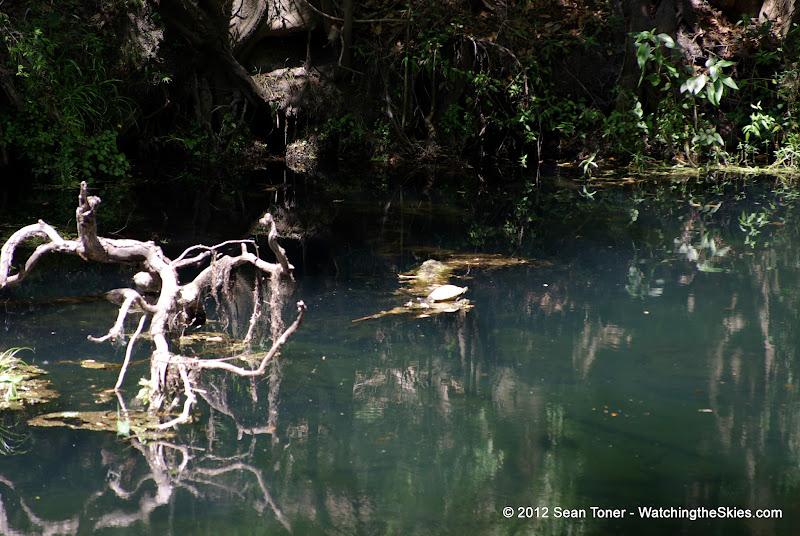 04-04-12 Hillsborough River State Park - IMGP4418.JPG