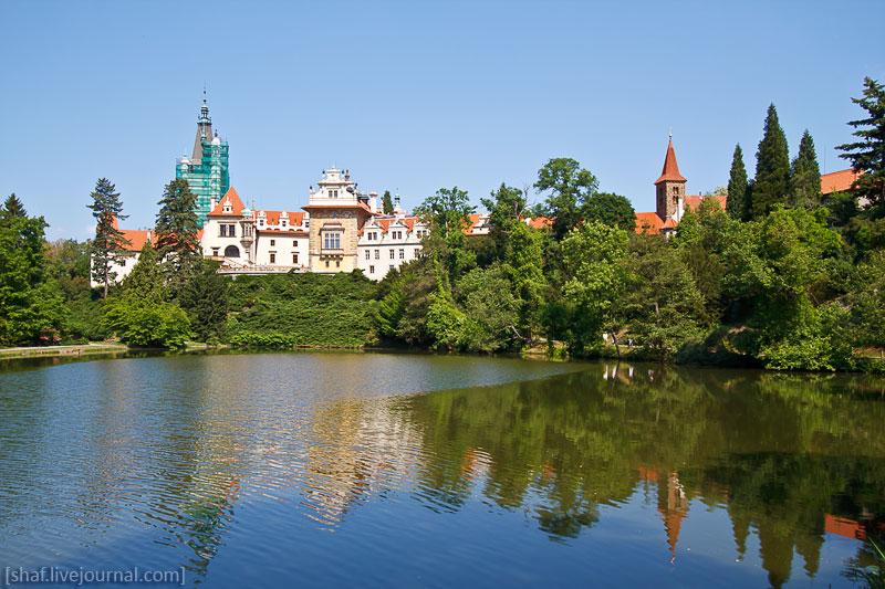 Чехия. Пругоницкий парк в цветении рододендронов