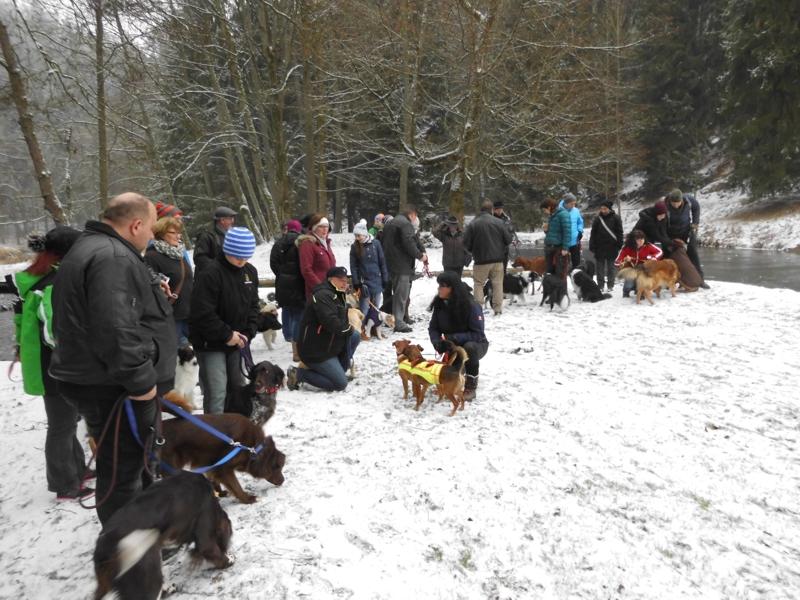 1. Januar 2016: Neujahrswanderung ins Waldnaabtal - DSCI0154.JPG