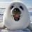 Ally Wilson's profile photo