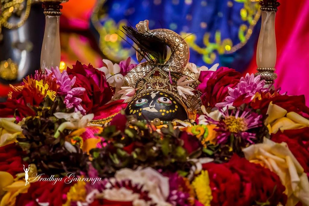 ISKCON Mayapur Deity Darshan 20 Jan 2017 (17)