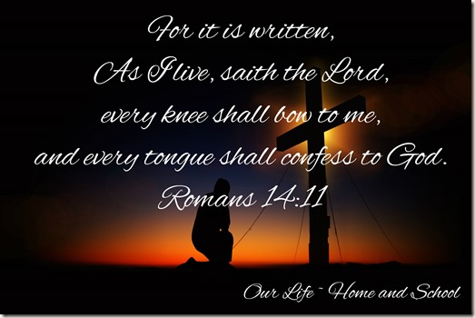 Scripture and a Snapshot 42918