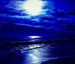 Blue Moon Beach Adventure : Grotto Beach Hermanus