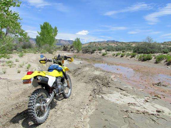 Coal Creek on the #0 trail