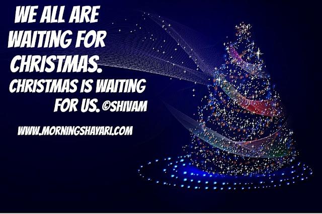 Christmas Tree, Christmas Carrol, Church, 25 december, jesus birthday, christmas carrols, bells, christmas present, mother marry