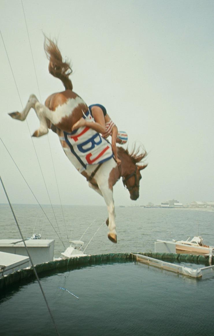 diving-horses-18