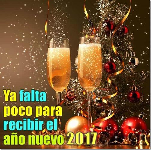 feliz año nuevo 2017 (3)