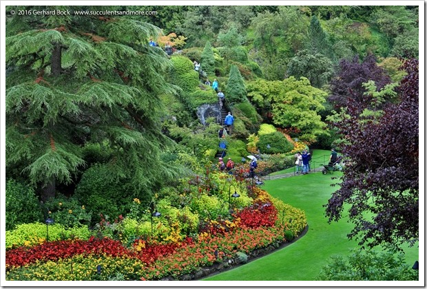 160906_Butchart_Gardens_0070