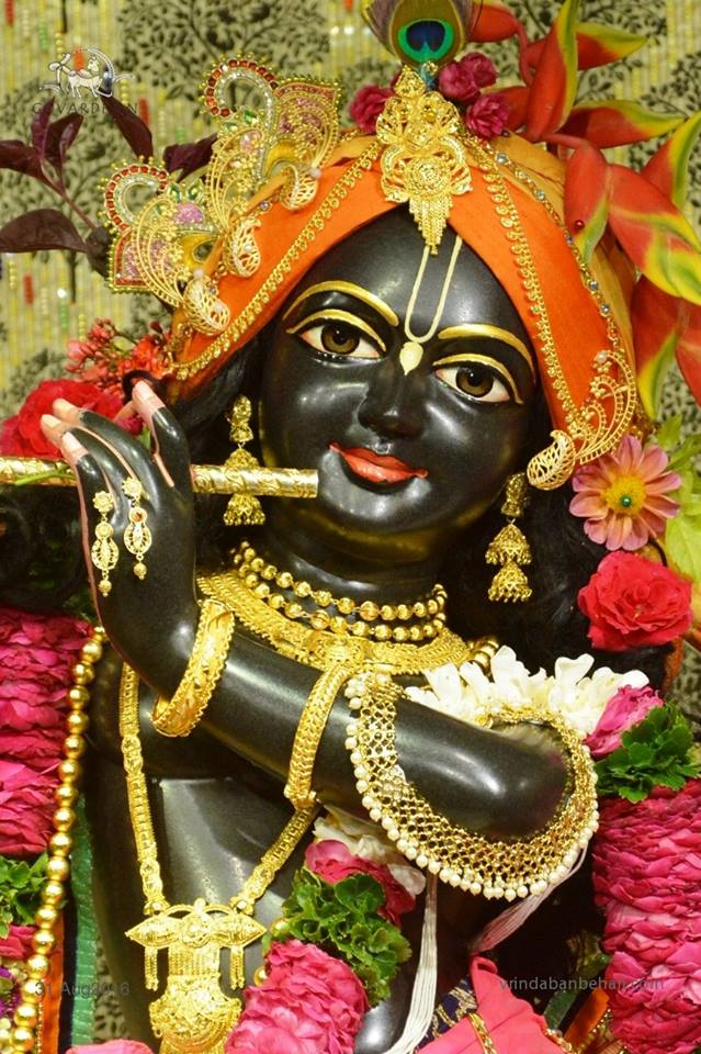 ISKCON Wada Deity Darshan 31 August 2016 (14)