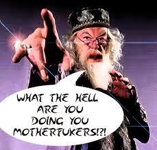 dumbledore%2B-%2Bmotherfuckers.jpg