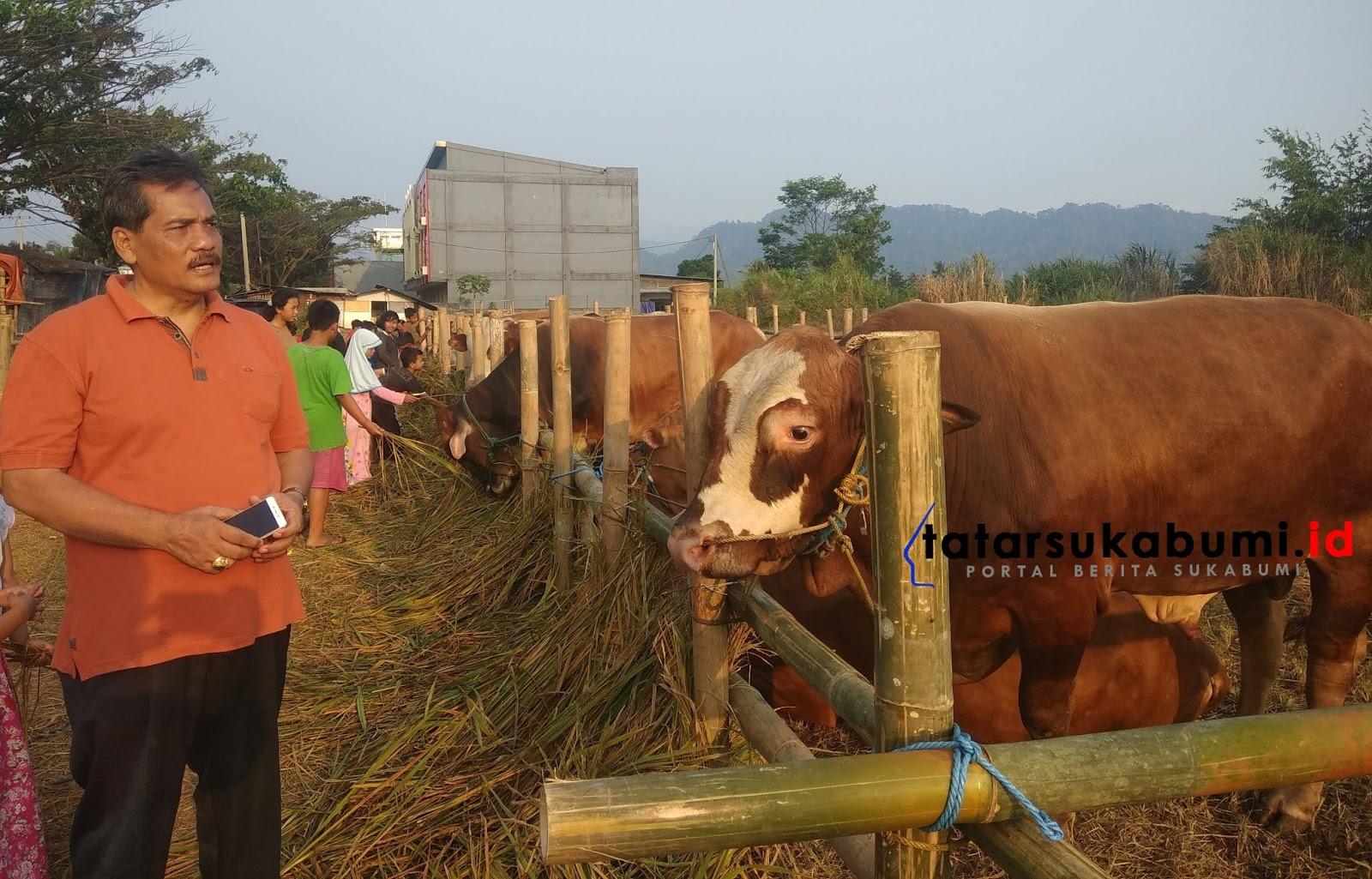 Pedagang Musiman Hewan Qurban di Sukabumi Mulai Menjamur, Harga Sapi Naik 2 Juta