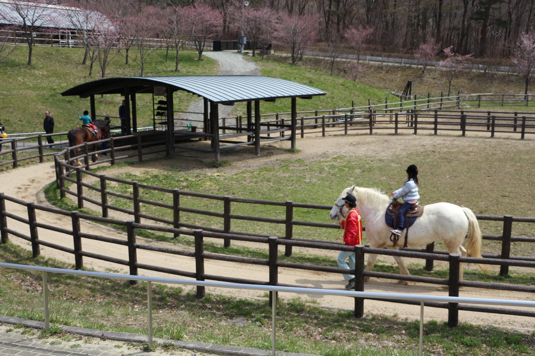 石筵ふれあい牧場 | 郡山のお出かけスポット 動物と子供 乗馬もできる