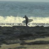 _DSC9296.thumb.jpg