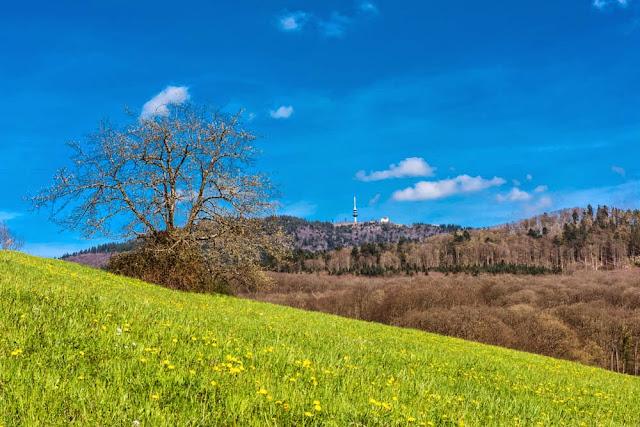 Blick zum Hochblauen mit Fernmeldeturm und Blauenhaus