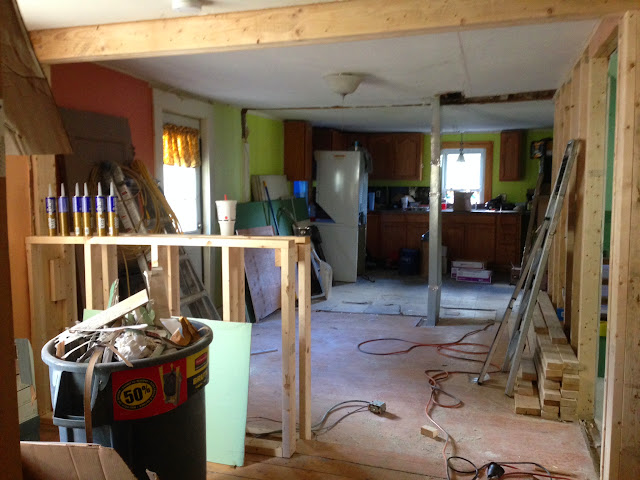 Renovation Project - IMG_0109.JPG